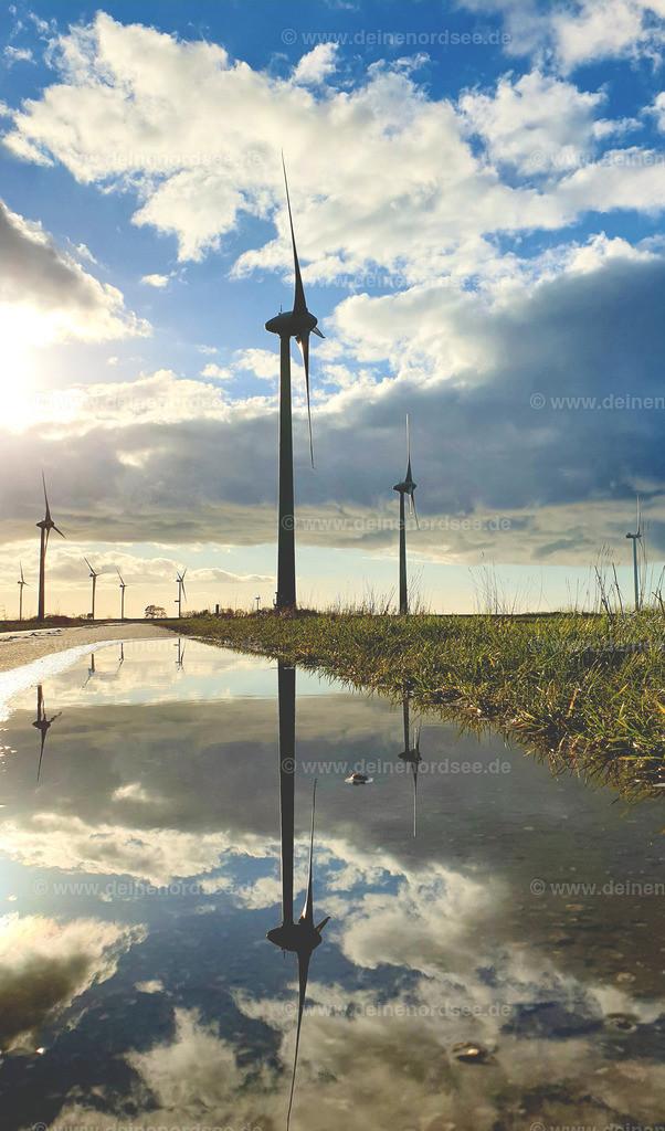 Spiegelung Windmühle im Koog
