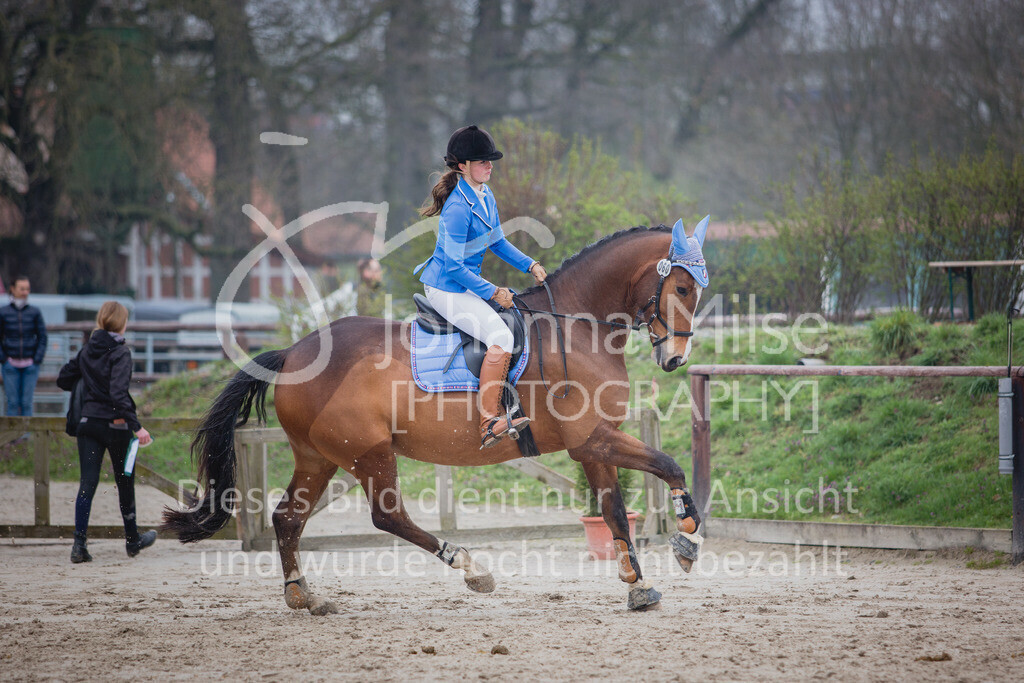 190406_Frühlingsfest_StilE-087   Frühlingsfest der Pferde 2019, von Lützow Herford, Stil-WB mit erlaubter Zeit