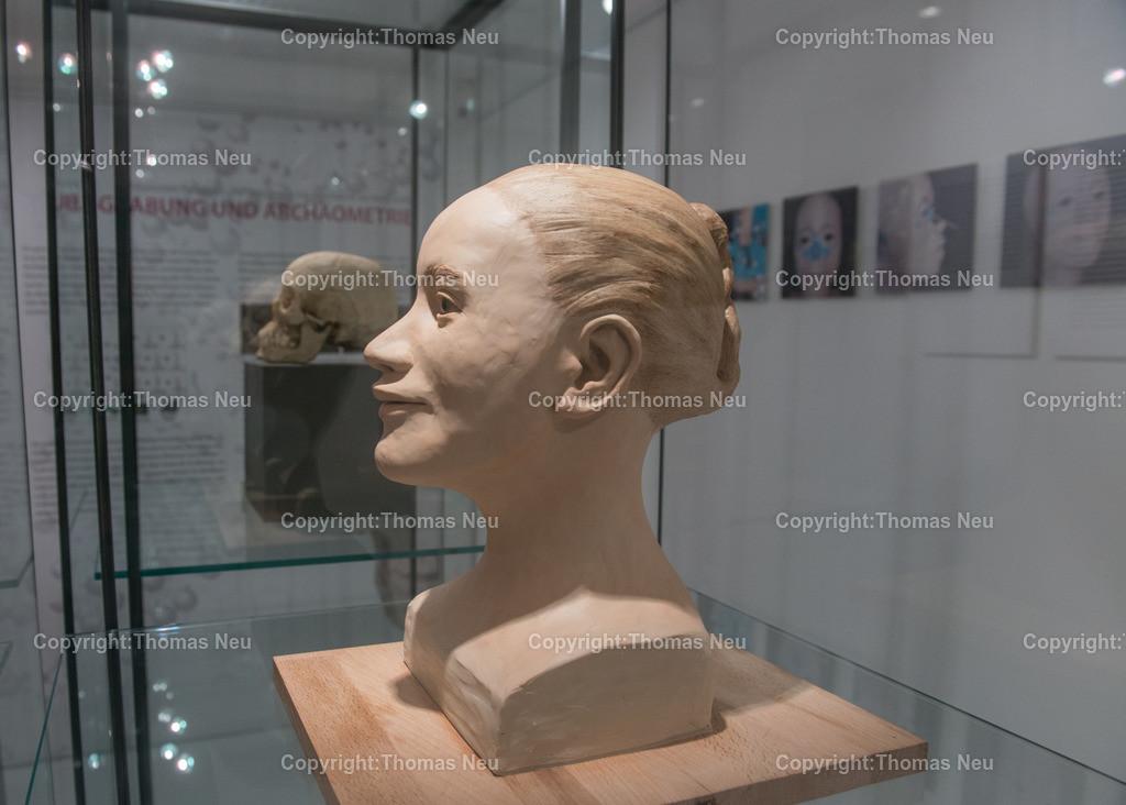 Vorfahren_Museum-26