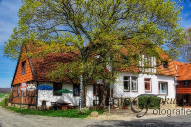 Frühling in Listringen | Die erste urkundliche Erwähnung von Listringen erfolgte zwischen 1175 und 1178 in der Schenkungsurkunde des Bishofs Adelog von Hildesheim. Listringen ist ein Ortsteil von Bad Salzdetfurth.
