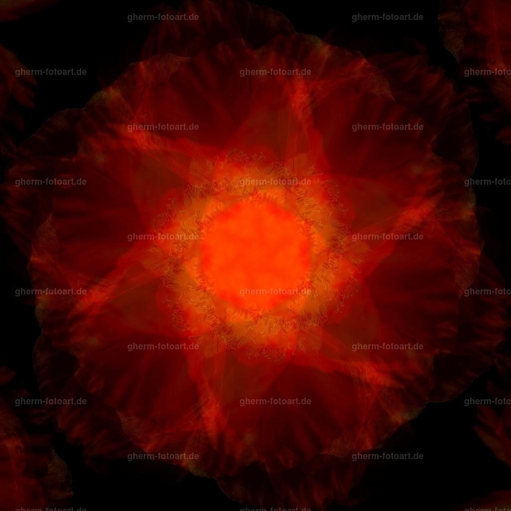 IMG00156-LR-korr-q-lmnr-kaleidoskop-8