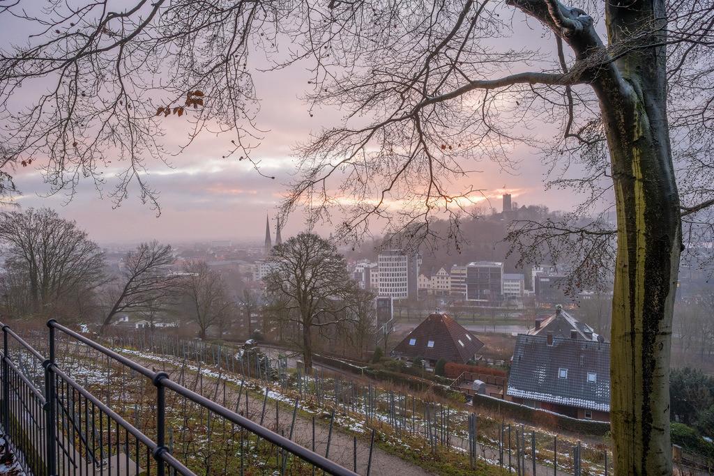 Wintermorgen auf dem Johannisberg | Wintermorgen im Januar auf dem Johannisberg in Bielefeld.