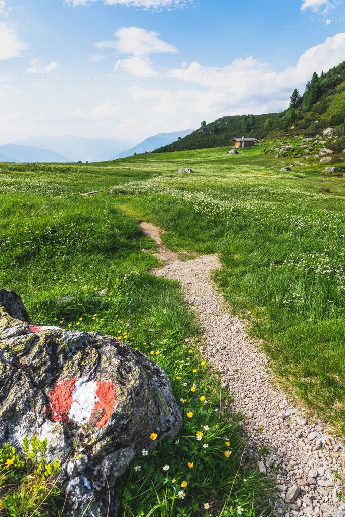 Wandergebiet Zillertal Arena Gerlosteingebiet-4