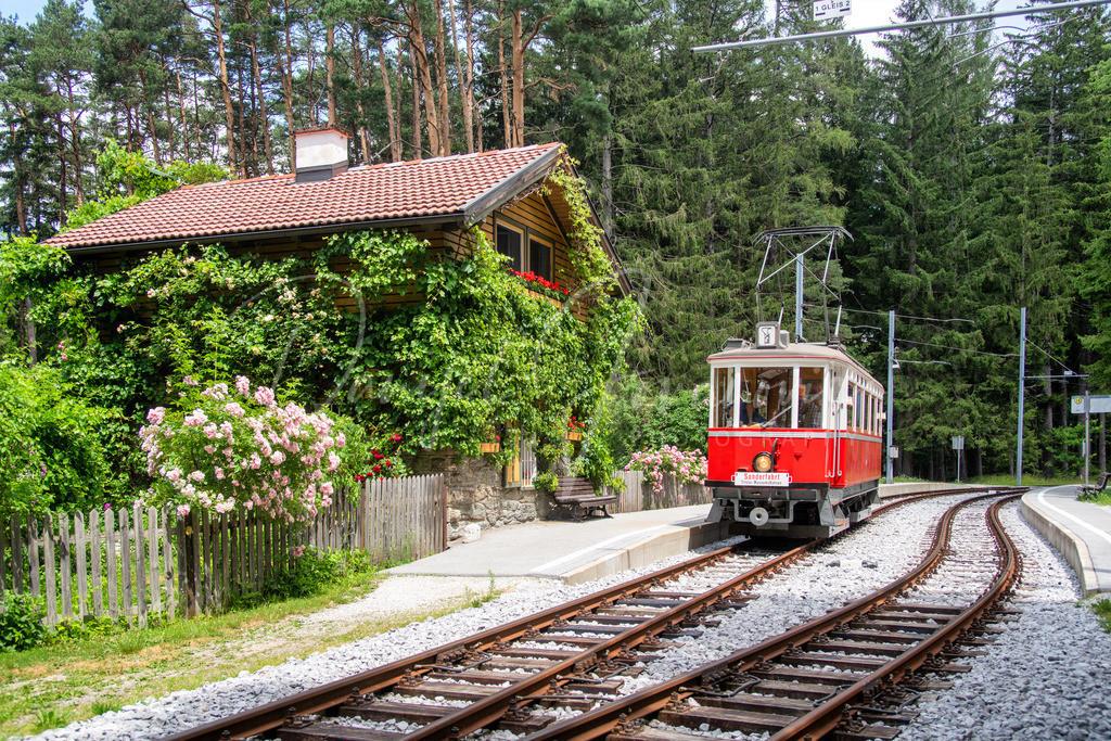 Tantegert | Nostalgische Straßenbahn an der Haltestelle Tantegert (Linie 6)