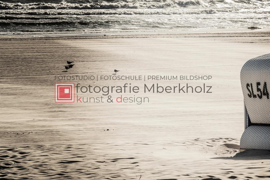 _Marko_Berkholz_mberkholz_usedom_MBE9590 | Die Bildergalerie Düne, Strand & Meer des Warnemünder Fotografen Marko Berkholz, zeigt Impressionen der abwechslungsreichen Dünenlandschaft an der Ostsee.