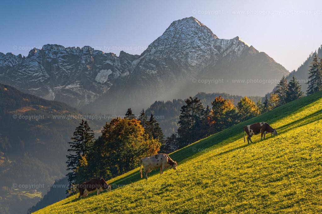 Herbst im Zillertal-1