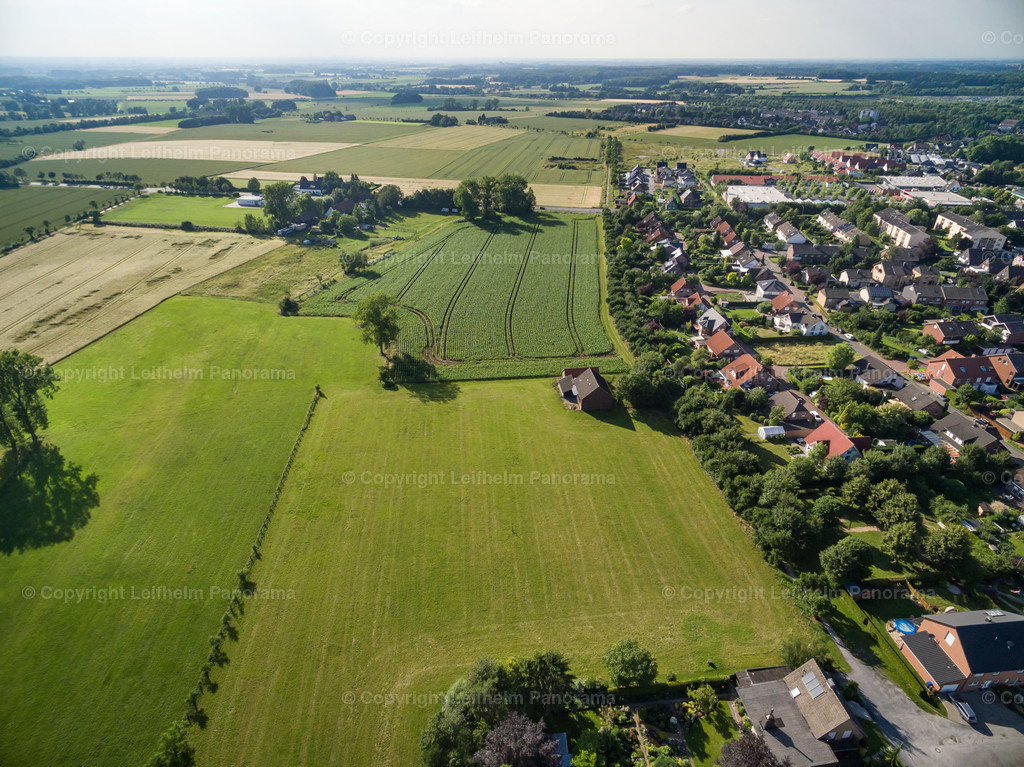 16-06-29-Leifhelm-Panorama-Weidenweg-03