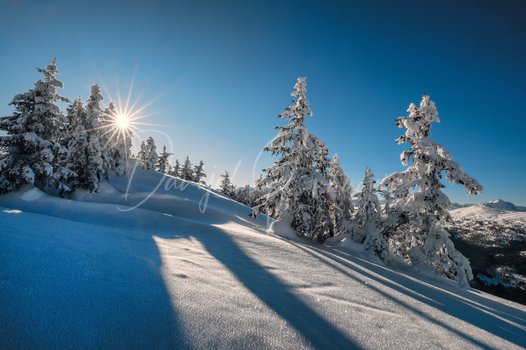 Winter Wonderland | Traumhafter Tiroler Winter