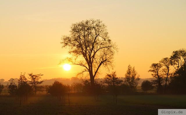 Sonnenuntergang bei Glehn | Sonnenuntergang zwischen Glehn und Kleinenbroich
