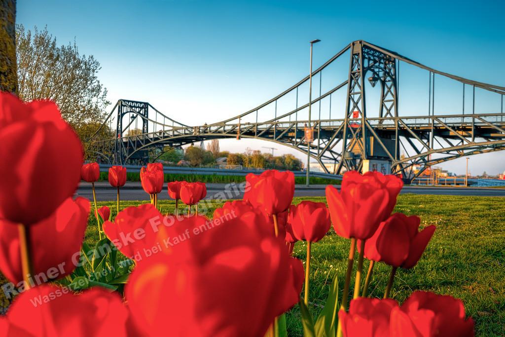 20190419-Frühling an der KW Brücke