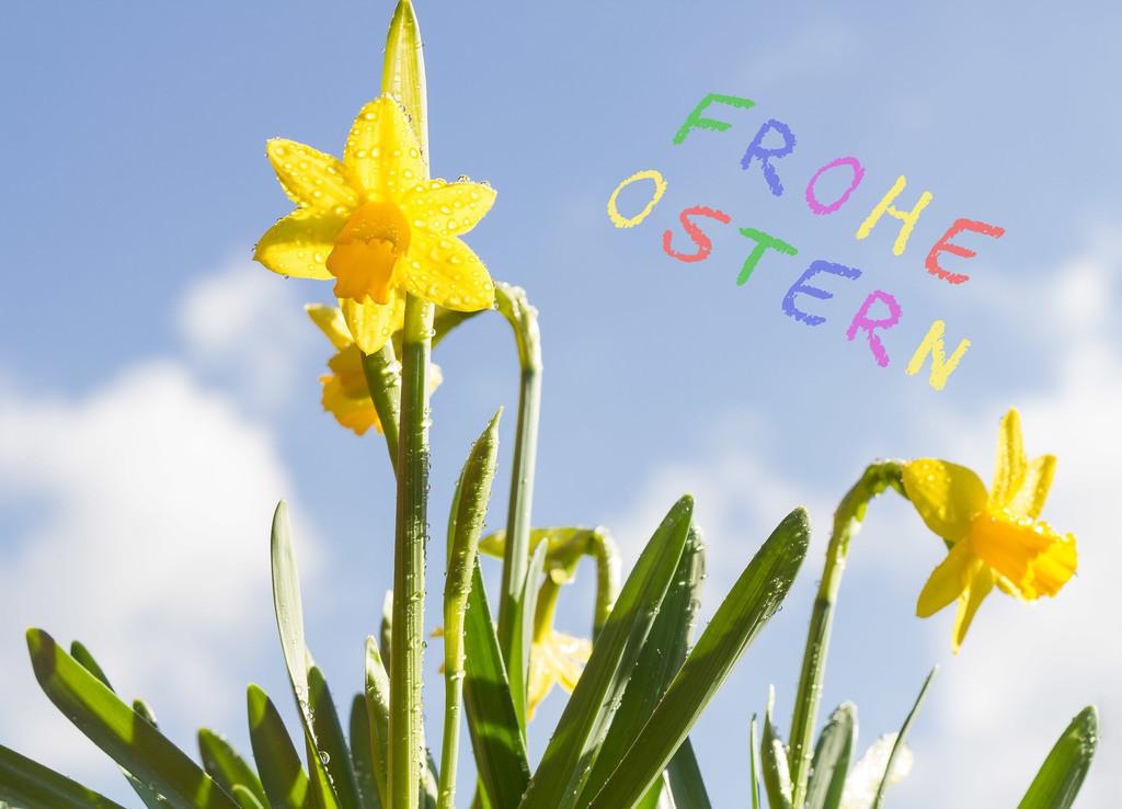 Frohe Ostern | Grußkarte für´s Osterfest.