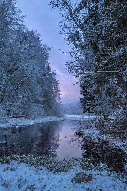 Frostig | Spiegelungen in einem kleinen Moorsee, bei frostiger Kälte