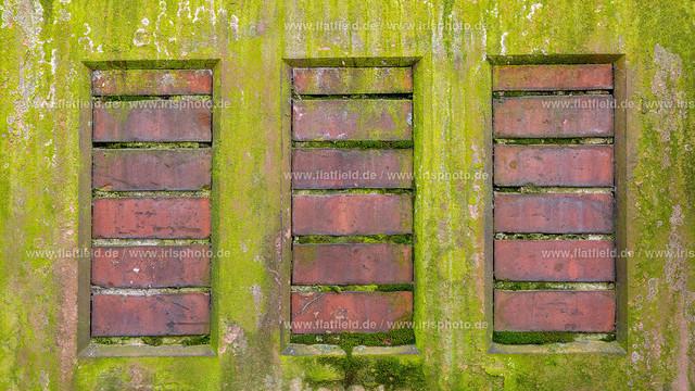 Wiesbaden-grüne-Wand