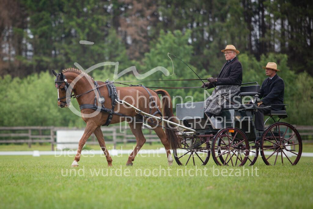 190525_Fahren-003 | Pferdesporttage Herford 2019 Fahren