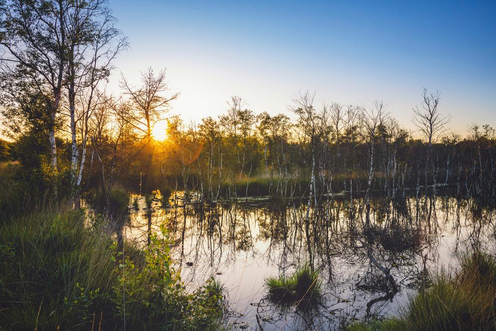 Ahrensfelder Moor | Sonnenuntergang im Ahrensfelder Moor.