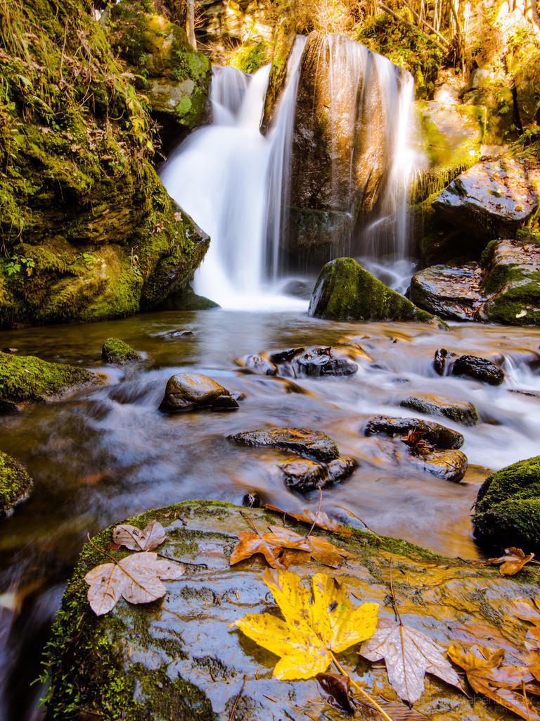 Herbst beim Wasserfall | Waserfall am Abenteuer Wasserweg Liebenfels