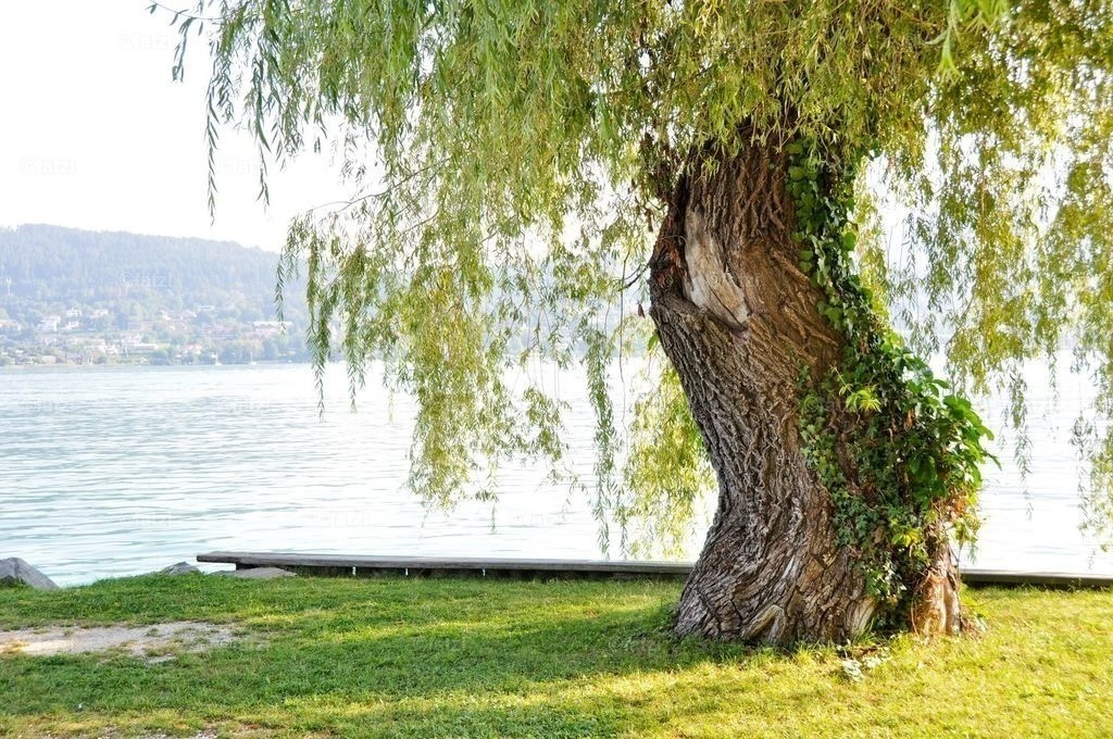 Woerthersee-Aug2012_039_1