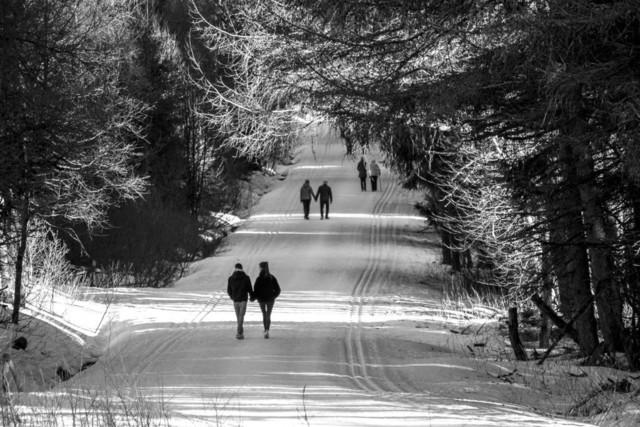 rhön - feb 19 - spaziergang sw